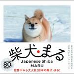 2014/12/21 ペットの王国ワンだランド感想 柴犬まる