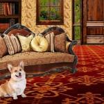 2015/8/16 ペットの王国ワンだランド感想 IMALUと愛犬バルーが沖縄 西表島を満喫