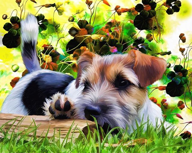 犬を飼うことによって得られる11の大きなメリット