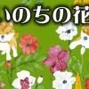 2015/7/12 ペットの王国ワンだランド感想 篠田麻里子号泣 殺処分ゼロへ!命の花プロジェクト