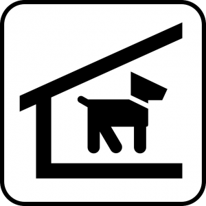 犬の帰巣本能
