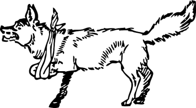 骨折治療中の犬のイラスト