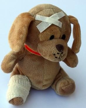 骨折をして包帯を巻いた犬